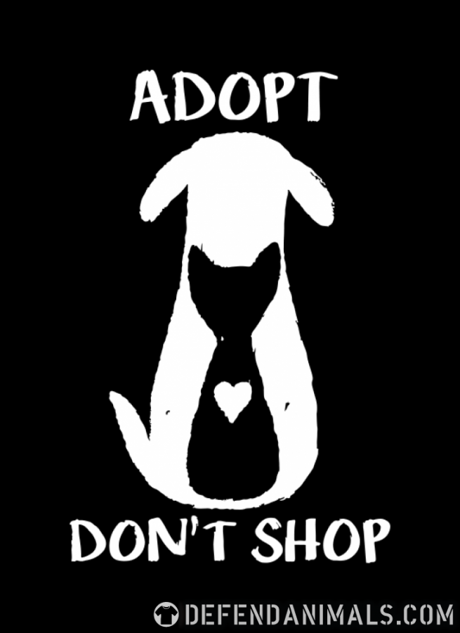 Pet+Adoption+is+the+Better+Choice