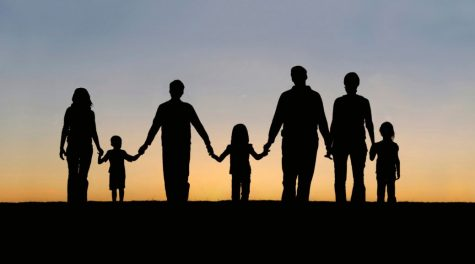 Responsibilities of the DFCS System and Foster Care in the United States